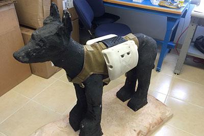 RPMTech - WolfPak Prototype